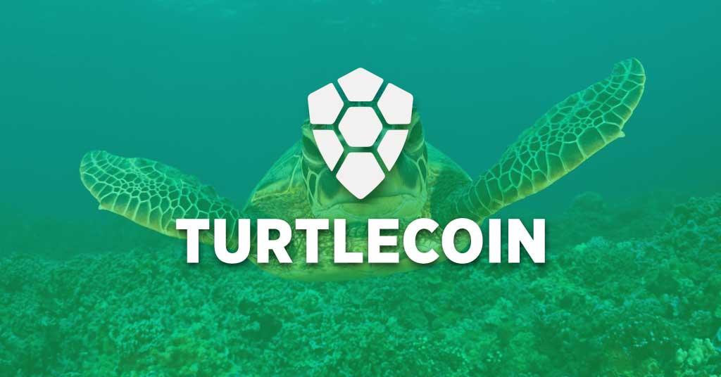 一文明白乌龟币TurtleCoin(TRTL币)如何挖矿新手教程软件下载及交易所交易